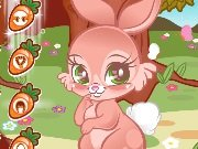Cute Rabbit Dress Up game