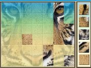 Animals from Africa game